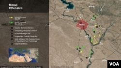 The Mosul offensive