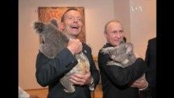 Путін не дочекався кінця саміту G20
