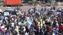 Abasekeli beZanu PF Basekela uGrace Mugabe Okuthiwa Watshaya uGabriella Engels
