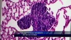 Борба против ракот