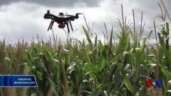 Dronlar hosildorlikni oshirishda qo'l keladi