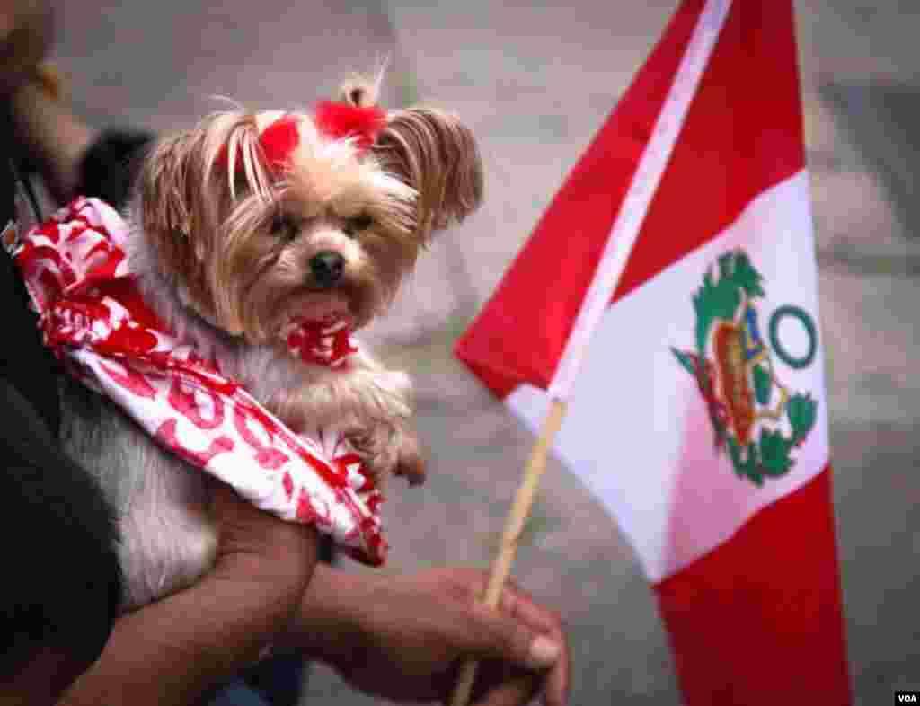 En Nueva Jersey la comunidad peruana también se reunió para celebrar el Día de la Independencia.