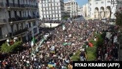 Très forte mobilisation lors du premier anniversaire des manifestations populaires dans la capitale algérienne, le 21 février 2020. (RYAD KRAMDI / AFP)