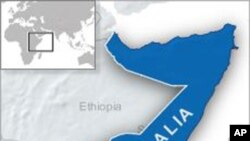 Somali Government Forces Capture Strategic Town