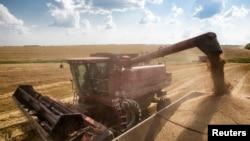 FILE - A combine harvester machine loads grain onto a transport truck near the southern Ukranian city of Nikolaev.