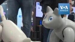 Des robots-chats au Salon électronique de Las Vegas