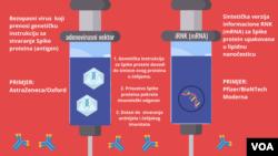 Adenovirusne vs. RNK vakcine