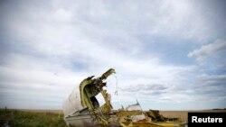 На месте падения пассажирского авиалайнера MH17 в Донецкой области Украины. 21 июля 2014 г.