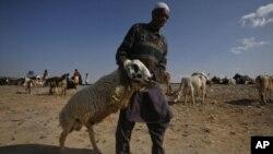 بلوچستان میں بیوپاریوں اور خریداروں کی پریشانیاں