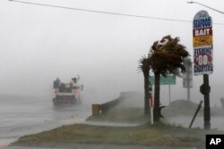 A work truck drives on Hwy 24 as the wind from Hurricane Florence blows palm trees in Swansboro N.C., Sept. 13, 2018.