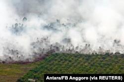 Kebakaran hutan yang terlihat di dekat perkebunan kelapa sawit di Kabupaten Tanah Putih di Rokan Hilir, Provinsi Riau, 21 Februari 2017. (Foto: Antara/FB Anggoro via REUTERS)