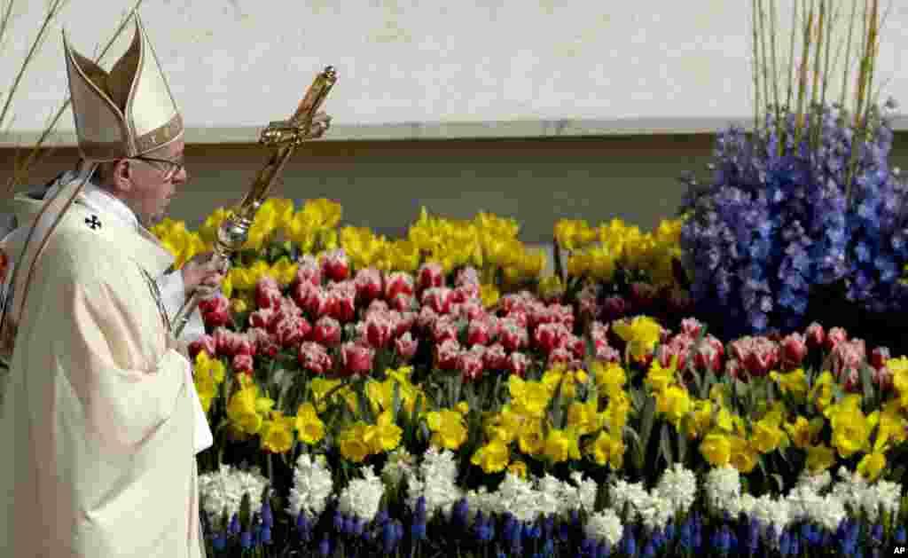 Папа Римський Франциск проходить повз квітів під час пасхальної меси на площі Святого Петра у Ватикані, 16 квітня 2017 року.