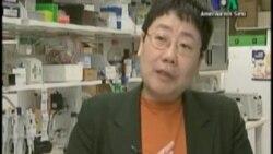 Meme Kanseri Tedavisinde Genetik Bilgilerin Önemi Büyük