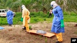 In this photo taken on Friday, June 19, 2015, the wrapped remains of a new born child suspected of contracting the Ebola virus, lays on a stretcher as health workers, dressed in Ebola protective gear, move the body for burial in Dubreka, Guinea. Despite hopes that the deadly Ebola outbreak could soon be contained in West Africa, it shows no signs of abating in Guinea and may be flaring up once more in Sierra Leone as people are flouting rules limiting travel meant to stop it. (AP Photo/Youssouf Bah)
