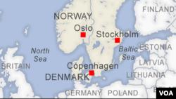 Tim pemadam kebakaran, Selasa (7/7), berhasil mengendalikan amukan api di pulau Lindholm, pulau yang sebelumnya sempat didedikasikan sebagai pusat riset penyakit hewan di Denmark. (Foto: iustrasi)