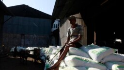 Seorang pekerja duduk di atas karung gula di dekat gudang pabrik gula Tasik Madu di Solo, Jawa Tengah, 4 Agustus 2011. (Foto: REUTERS/Beawiharta)