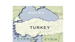 حدود ۱۰۰ مظنون القاعده در ترکیه بازداشت شدند