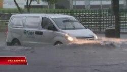 Sydney: Mưa bão gây ngập lụt nặng