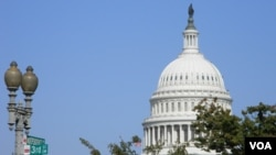 Los estadounidenses eligen en noviembre a los 435 miembros de la Cámara de Representantes y a cerca de la tercera parte de los 100 miembros del Senado.