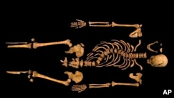 A photo made available by the University of Leicester of the remains of England's King Richard III found underneath a parking garage last September at the Grey Friars excavation in Leicester, Britain.