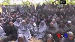 Faut-il croire les autorités nigérianes sur le cessez-le-feu avec Boko Haram ?