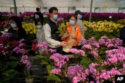 Customers wearing face masks to protect against the spread of the coronavirus, look at pots of Phalaenopsis orchids at one of Hong Kong's largest orchid farms located at Hong Kong's rural New Territories on Jan. 14, 2021.