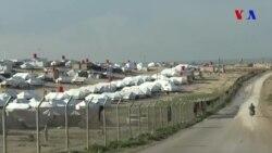 İŞİD ailələri qaçqın düşərgələrinə axışır