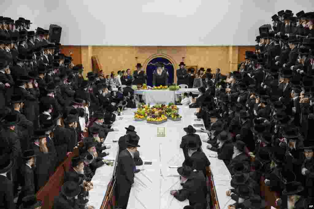 """Ultra-Orthodox Jews of the Nadvorna Hasidic dynasty celebrate the Jewish feast of 'Tu Bishvat' or """"New Year of the Trees"""" in the ultra-Orthodox town of Bnei Brak, Israel."""