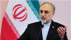 ابراز نگرانی صالحی در مورد سرنوشت چند ایرانی ربوده شده در سوریه