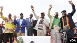 Vatungamiri vemapato ari muMDC Alliance. (Mufananidzo: MDC)