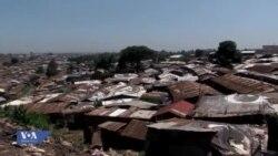 Wanubi waadhimisha siku ya utamaduni wao mjini Nairobi, Kenya