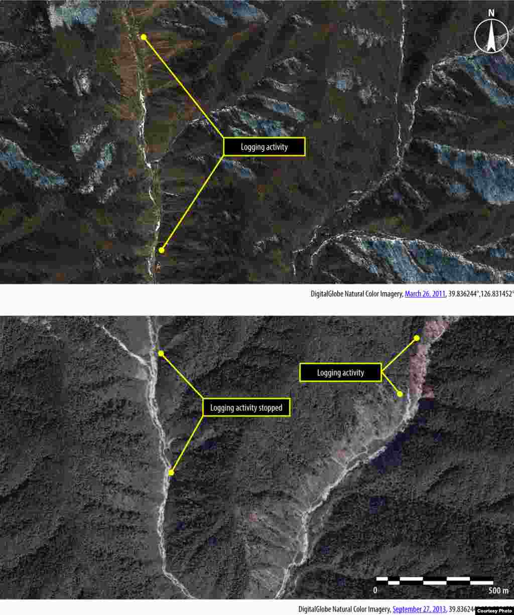 Aerial views of logging at Camp 15 in North Korea in 2011 and 2013. (Amnesty International/DigitalGlobe)