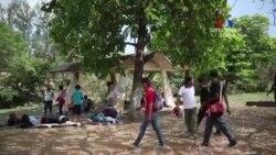 Մեքսիկան պատրաստ է փախստականի կարգավիճակ տալ կենտրոնամերիկյան երկրների միգրանտներին