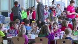 Discovery Elementary, SD Ramah Lingkungan di Arlington, Virginia
