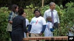 바락 오바마(오른쪽) 미국 대통령과 영부인 미셸(왼쪽) 여사가 6일 어린이들과 함께 백악관 텃밭 수확행사에 참가하고 있다.