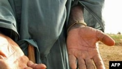 活动人士担心争购非洲土地威胁当地农民的生存