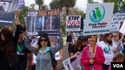 美国爱狗人士上街抗议玉林狗肉节