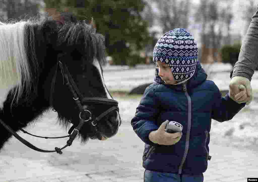A boy looks at a pony as he walks in a park in central Kyiv, Ukraine.