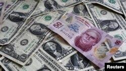 Khi ông Trump tiến tới chiến thắng chung cuộc, đồng peso sụt giá 13%, mức thấp nhất kể từ đợt rớt giá trong cuộc khủng hoảng Tequila cách đây 22 năm.