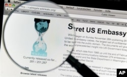 WikiLeaks Concern for South African Freedom of Information Activists