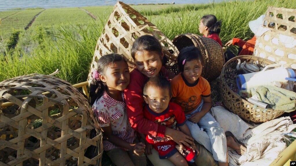 Mengurangi Keterlibatan Anak Bekerja Di Sektor Pertanian