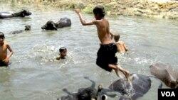 Anak-anak di India berendam di sungai untuk meredakan serangan udara panas.