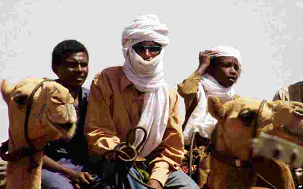 The Darfur war involved conflict between nomads and villagers, fueled by government backing of Janjawid militias.