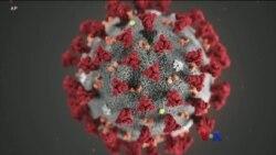 Coronavirus ျပႆနာ ျမန္မာကိုင္တြယ္မႈ