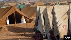اردوگاه آوارگان دریمن
