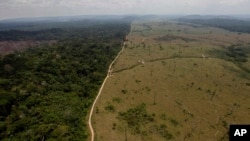 FILE - This Sept. 15, 2009, photo shows a deforested area near Novo Progresso in Brazil's northern state of Para.