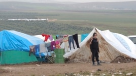 A Syrian refugee looks on in a refugee camp on the Syrian side of the border with Turkey, near Idlib, January 29, 2013.