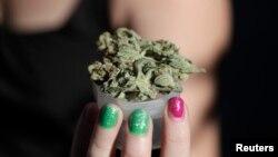컵에 담긴 마리화나. 미국 워싱턴 DC는 소량의마리화나 소지 혐의를 기소 대상에서 제외하기로 결정했습니다.