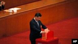 چینی صدر شی جن پنگ اپنا ووٹ کاسٹ کر ہے ہیں