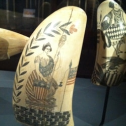 An example of scrimshaw, an art form that uses whalebone or teeth